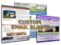 Real Estate Virtual Assistant - Email Blasts Samples